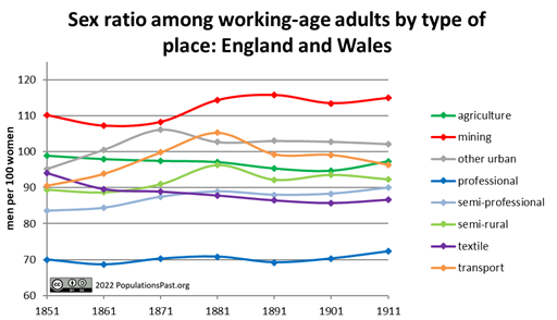 Sex ratio in the working ages